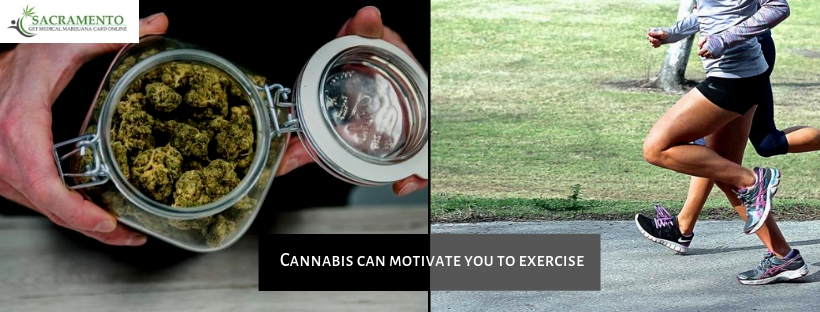 Cannabis Can Motivate You To Exercise !