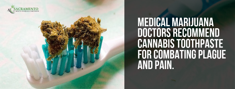 Medical Marijuana Doctors Recommend Cannabis Toothpaste For Combating Plague And Pain