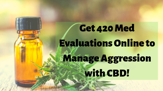 Get 420 Med Evaluations Online to Manage Aggression with CBD!