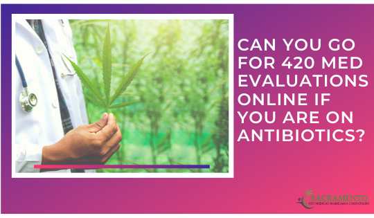 Can You go For 420 Med Evaluations Online if You Are on Antibiotics?